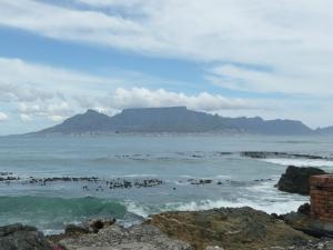 Wanneer je een tour met de bus over het eiland doe, heb je een prachtig uitzicht over Cape Town