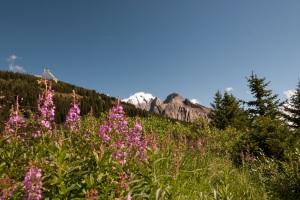 Prachtige natuur in Canada