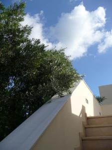 Blauwe lucht, olijfboom, dat is al twee keer prettig