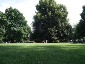 Chillen in het park