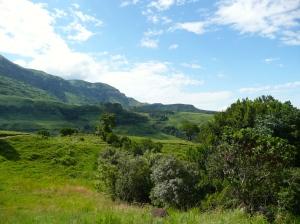 2008 Zuid-Afrika 171